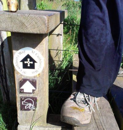 St Cuthbert's Way marker July 2013