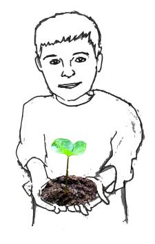 plantboy1